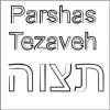 Parsha - Tezaveh 5772